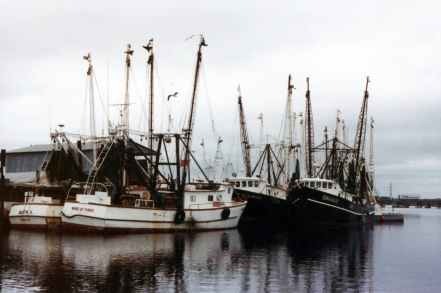 boats fishing boat harbor harbour