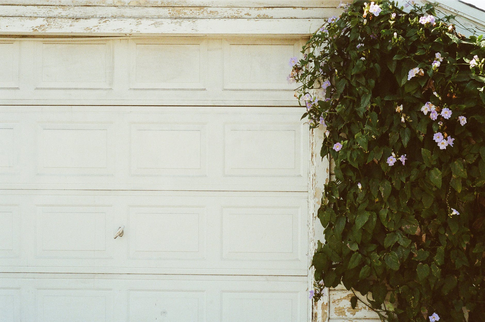 door closed garage