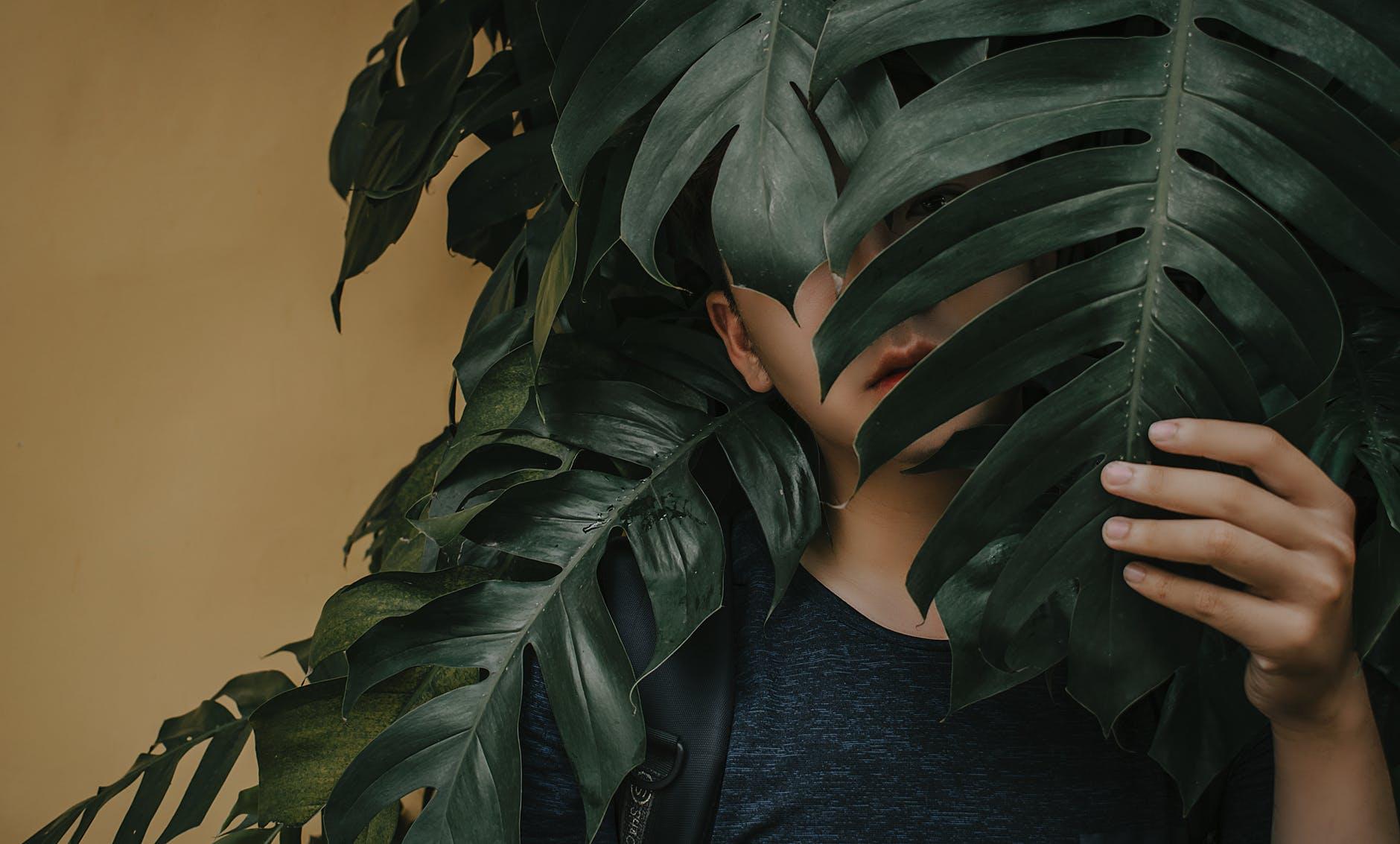 photo of a boy near leaves