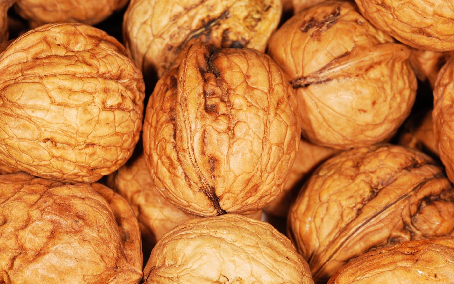 food brown nuts snack